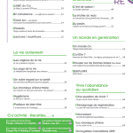 Magazine-LeChouBrave-n11-Sommaire